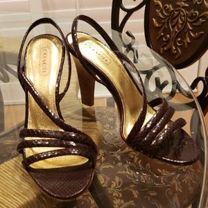 Coach Beatriz python heels